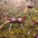 Basteln mit Kastanien und Eicheln: Anleitung für einen Dinosaurier