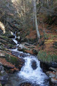 Wandern mit Kinder in Tirol. Die Wolfsklamm ist auch im Herbst ein lohnendes Ziel für eine Familientour.  foto (c) kinderoutdoor.de