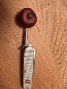 Mit dem Taschenmesser bohrt Ihr fünf Löcher durch die Kastanie. foto (c) kinderoutdoor.de