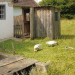Kinder Daunenjacken von Patagonia und Co: Alles Gans sauber?