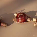 Basteln mit Kastanien: Kinderleichte Autos