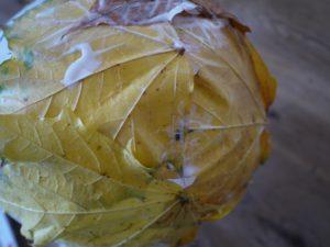 Unsere Bastelanleitung für Naturmaterialien: Langsam nimmt die herbstliche Laubschüssel Form an.  foto (c) kinderoutdoor.de
