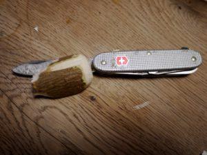 Schnitzen mit dem Taschenmesser: Zur Hälfte ist der Igel bereits fertig. foto (c) kinderoutdoor.de