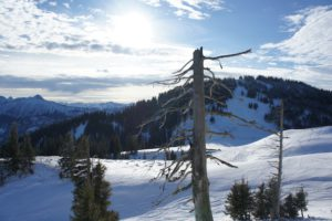 Winterurlaub in Bayern: Das sind Touren mit der Familie durch eine faszinierende Natur.  foto (c) kinderoutdoor.de