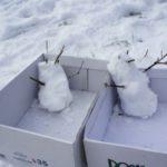 Schnitzeljagd im Winter: Die Polarforscher sind unterwegs