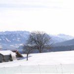 Berghütten für Familien im Winter: Drei tolle Tipps für die kalte Jahreszeit