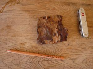 Basteln mit Baumrinde. Mehr Material ist für Kerzenständer nicht nötig.  foto (c) kinderoutdoor.de