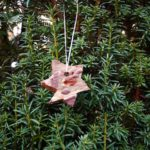 Basteln mit Baumrinde: Ein Stern als Weihnachtsdeko