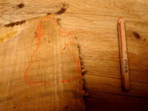 Mit einem gut sichtbaren Stift skizziert Ihr die Maria auf das Holz. foto (c) kinderoutdoor.de