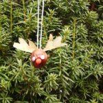 Weihnachtsbaumschmuck basteln mit Kindern und Kastanien: Ein wunderschönes Rentier