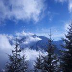 Schneeschuhwandern mit Kindern in Tirol: Rauf zur Ehenbichler Alm