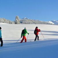 Mit Kindern Schneeschuhtouren gehen. Im Tiroler Alpbachtal fühlen sich die Kinder wie Trapper in Kanada. ©Alpbachtal Seenland Tourismus / Wegscheider Eva
