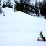 Rodeln mit Kindern in Tirol: Heiße Kufen und kühler Fahrtwind