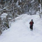 Schneeschuhwandern mit Kindern im Allgäu: Auf die Riedholzer Kugel