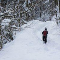 Schneeschuhwandern im Allgäu: Auf dem Iberg geht es der Riedholzer Kugel entgegen.  foto (c) kinderoutdoor.de