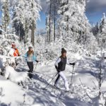 Schneeschuhwandern mit Kindern im Bayerischen Wald: Der Silberberg ruft
