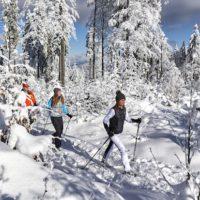 Schneeschuhwandern im Bayerischen Wald: In Kanada kann es kaum anders aussehen. © Marco Felgenhauer / Woidlife Photography