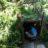 Landart für Kinder: Eine Mooshütte für kleine Entdecker.  foto (c) kinderoutdoor.de