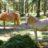 Kinder im Glück: Auf dem Bozner Burgenweg treffen die Outdoorkids auch auf die gutmütigen Haflinger.   Foto (c) Copyright: Südtirols Süden