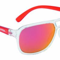 Die Welt mit durch die rosa Brille sehen? Das geht mit der Alpina Yalla, denn diese hat die Schutzklasse S 3.  foto (c) alpina