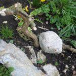 Kinder schnitzen einen Drachen für den Garten mit dem Taschenmesser