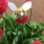 Kinder basteln Bienen aus Naturmaterialien: Das große Summen!