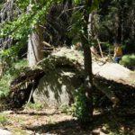 Waldhutten Kinder Bauen Kinderoutdoor Outdoor Erlebnisse Mit Der