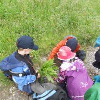 """Bei der Schnitzeljagd am Kindergeburtstag """"Im Tal der Elfen"""" haben die Kinder mit der Eisscholle das rettende Ufer erreicht.   foto (c) kinderoutdoor.de"""