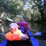 Paddeln mit Kindern im Spreewald: Kinderleichte Rundtour um Burg Kolonie