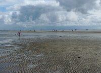 Watt is los? Plötzlich zieht sich das Meer zurück und das Watt ist zu sehen. Auch Kinder sind von diesem Naturschauspiel beeindruckt.   foto (c) kinderoutdoor.de