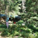 Übernachten im Wald: Ein Packliste für ein spannendes Microadventure
