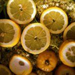 Outdoor Rezept für Kinder: Leckerer Holunderblütensirup