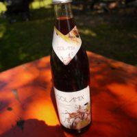 Fruttica Cola-Mix von der Memminger Brauerei überzeugt mit seinem feinen Gebirgswasser.   foto (c) kinderoutdoor.de