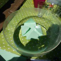 Nach wenigen MInuten geht es los un die Blätter öffnen sich wie bei einer echten Seerose.   foto (c) kinderoutdoor.de