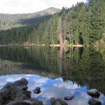 Wandern mit dem Kinderwagen zum Arbersee im Bayerischen Wald