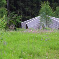 Der Lichtstern gehört zu den gelungen außergewöhnlichen Übernachtungsmöglichkeiten im Bayerischen Wald.   foto (c) Nationalpark_Bayerischer_Wald_Johannes_Haslinger