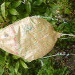 Koinobori mit Kindern basteln: Eine wunderschöne Karpfenfahne