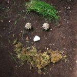Landart mit Kindern: Spontan beim Wandern lustige Waldwichtel basteln