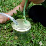Basteln mit Kindern: Ein Becherlupenglas mit Einsaugvorrichtung