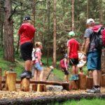 Familienwanderung bei der Tiroler Zugspitz Arena: Moosle´s Zauberwald