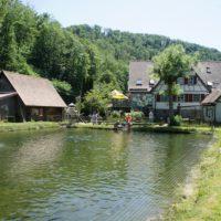 Wenn Ihr mit der Familie durch das Roggental radelt, kehr am besten in der Oberen Roggenmühle ein.   foto (c) kinderoutdoor.de