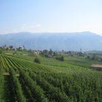 Wandern mit Kindern in Südtirol: Auch ohne Gipfel glücklich