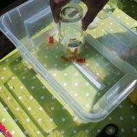Unsere Gummibärchen bleiben auch unter Wasser trocken.   foto (c) kinderoutdoor.de