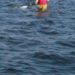 Kinder paddeln im Rorichumer Tief: Ungestört durchs Wasser gleiten