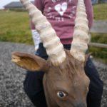Namuk Kinderkleidung im Test: Scouts Sweater auf der Alm