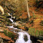 Wandern mit Kindern zu Wasserfällen im Herbst: Hier rauscht was!