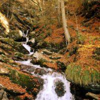 Wanderung mit Kindern zum Wasserfall: Im Faltenbachtobel gibt es mehrere Wasserfälle zu sehen.   foto (c) kinderoutdoor.de