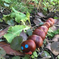 Unsere Raupe aus Kastanien ist auf Futtersuche.   foto (c) kinderoutdoor.de
