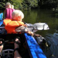 Bei der Paddeltour auf der Enz kommt Ihr auch manchem Wasservogel nahe. Beachtet bitte die Befahrungsregelungen.   foto (c) kinderoutdoor.de