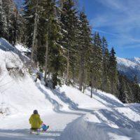Hinein ins Vergnügen – in St. Anton am Arlberg geht der Winterspaß neben der Piste auf der vier Kilometer langen Naturrodelbahn weiter. Bildnachweis: Arlberger Bergbahnen AG